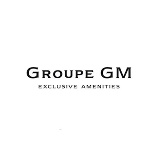 groupe gm - référence de Dianego Learning